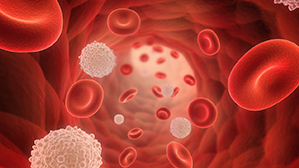 New Directions in Chronic Lymphocytic Leukemia Care: A Review of 2019 Treatment Guideline Updates