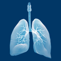 TP53 Mutations Loom Large in Lung Cancer Study